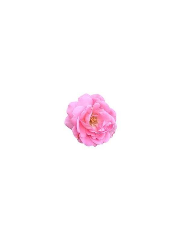 huile d'argan a la rose de damas
