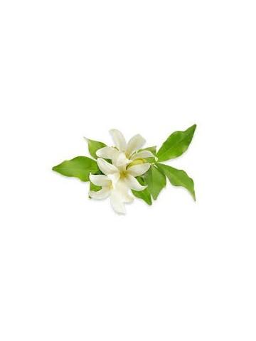 Eau florale Bio de Fleur d'Oranger